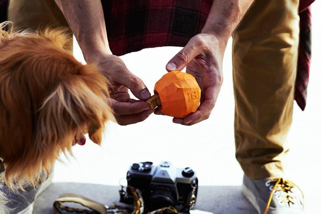 Zeedog Superfruitz - Orange