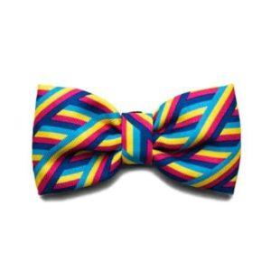 Zeedog Bow Tie - Bowie