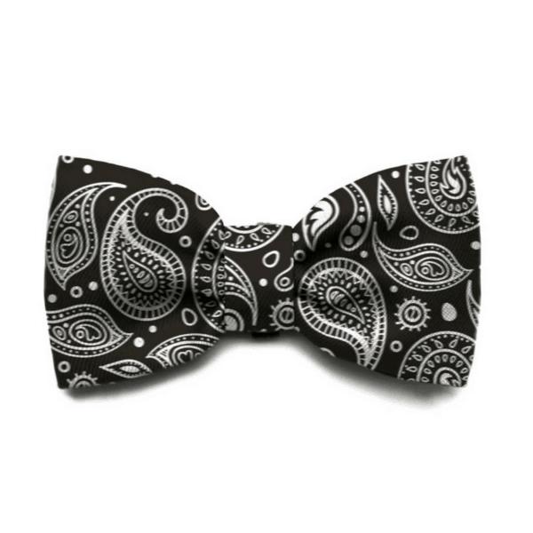 Zeedog Bow Tie - Paisley