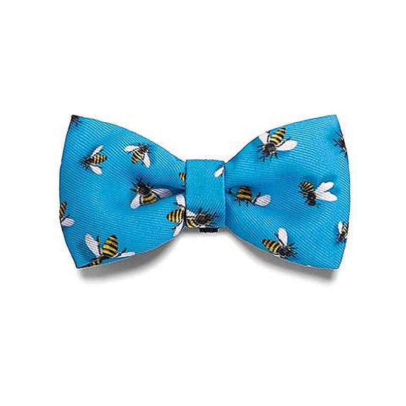 Zeedog Bow Tie - Buzz