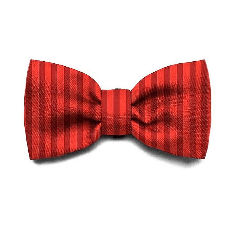 Zeedog Bow Tie - Fuji